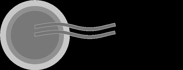 bunnik-logo